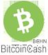 Payment in bitcoincash